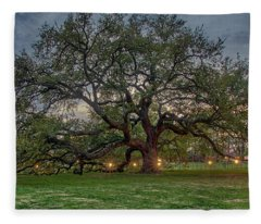 Emancipation Oak At Dusk Fleece Blanket