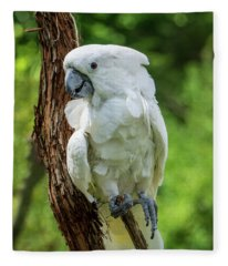 Endangered White Cockatoo Fleece Blanket