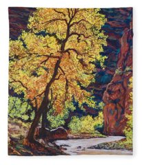 Escalante River South Utah Fleece Blanket