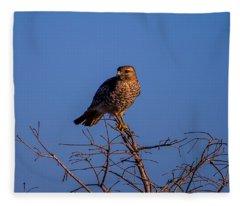 Evening Look Out Fleece Blanket
