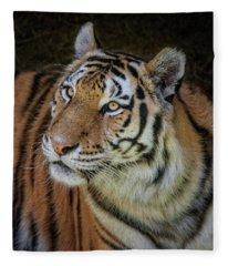 Eyes Of The Tiger Fleece Blanket