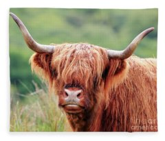 Face-to-face With A Highland Cow Fleece Blanket