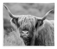 Face-to-face With A Highland Cow - Monochrome Fleece Blanket