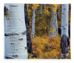 Fall Aspen Forest Fleece Blanket
