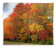 Fall Colors Fleece Blanket