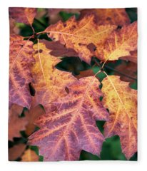 Fleece Blanket featuring the photograph Fall Flames by Whitney Goodey