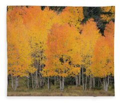 Fall Has Arrived Fleece Blanket