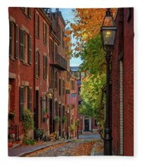 Fall In Beacon Hill Fleece Blanket