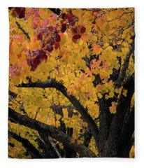 Fall In Carlyle Fleece Blanket