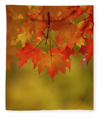Fall Leaves Fleece Blanket