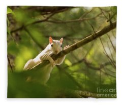 Famous Brevard White Squirrel Fleece Blanket