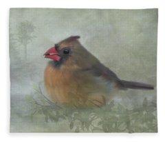 Female Cardinal With Seed Fleece Blanket
