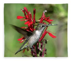 Female Ruby-throated Hummingbird Dsb0325 Fleece Blanket