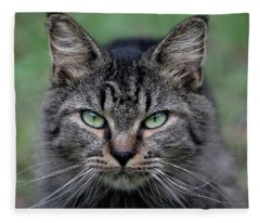 Feral Cat Fleece Blanket