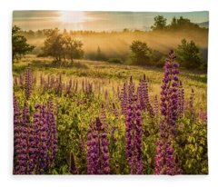 Fields Of Lupine Fleece Blanket
