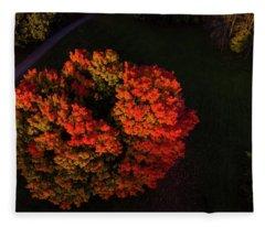 Fire Tree Fleece Blanket