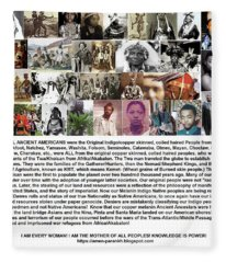 First Native Americans Were Indigo Twa Black Afrikans Fleece Blanket