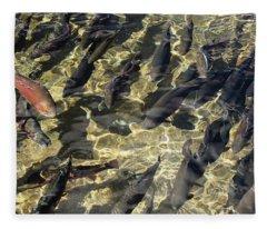 Fish Hatchery Fleece Blanket