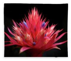 Flaming Flower Fleece Blanket