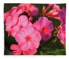 Flaming Pink Phlox Fleece Blanket