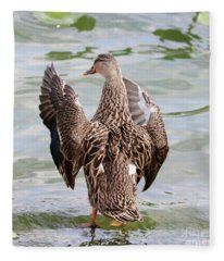 Flapping Female Mottled Duck Square Fleece Blanket
