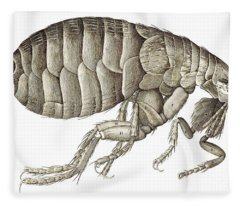 Flea From Micrographia Fleece Blanket