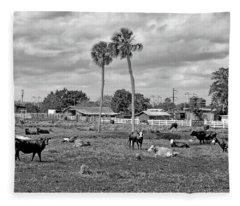 Florida Farmscape Fleece Blanket