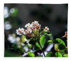Beautiful Blooms Fleece Blanket