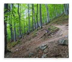 Forest On Balkan Mountain, Bulgaria Fleece Blanket