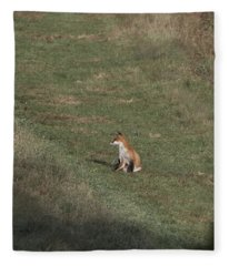 Fox Bsking In The Sun 1 Fleece Blanket