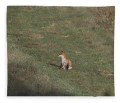 Fox Bsking In The Sun 1 Fleece Blanket