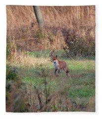 Fox In The Wild Fleece Blanket