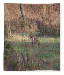 Fox On Prowl Fleece Blanket