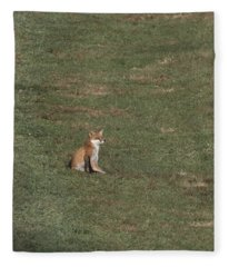 Fox Sitting In The Sun 2 Fleece Blanket