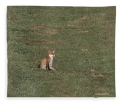 Fox Sitting In The Sun 2 Fleece Blanket
