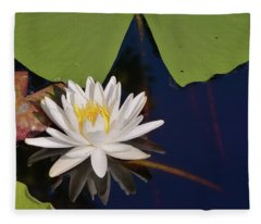 Fragrant Water Lily Fleece Blanket