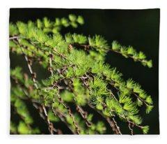 Fresh Fleece Blanket