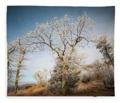 Frost On The Mountain Fleece Blanket