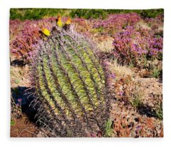 Fleece Blanket featuring the photograph Fruit-bearing Barrel Cactus In Desert Rhubarb by Judy Kennedy