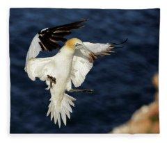 Gannet Landing Troup-head Fleece Blanket