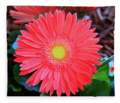 Gerbera Daisy Fleece Blanket