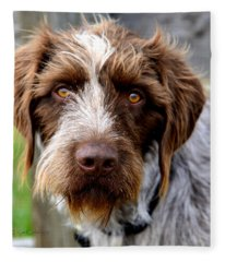 German Wirehaired Pointer  Fleece Blanket