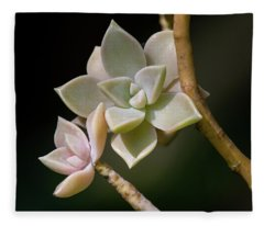 Ghost Plant Fleece Blanket