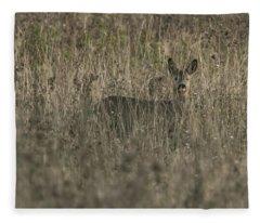 Ghosts In The Grass Roe Deer Fleece Blanket