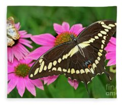 Giant Swallowtail Papilo Cresphontes Fleece Blanket