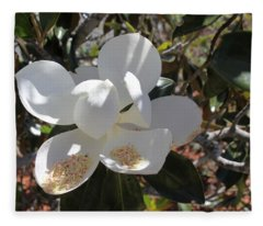 Gigantic White Magnolia Blossoms Blowing In The Wind Fleece Blanket