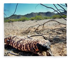 Fleece Blanket featuring the photograph Gila Monster In The Arizona Sonoran Desert by Judy Kennedy