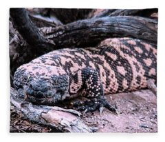 Fleece Blanket featuring the photograph Gila Monster Under Creosote Bush by Judy Kennedy