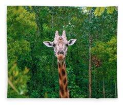 Giraffe Looking For Food During The Daytime. Fleece Blanket