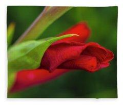 Gladiolus Fleece Blanket